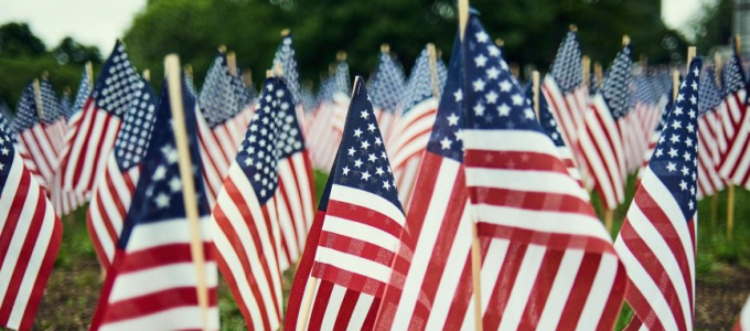 american flags in the grass